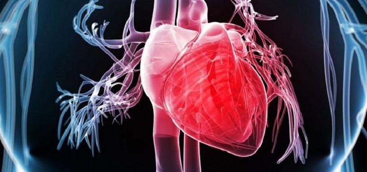 tener un corazon sano