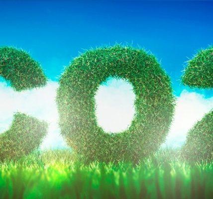 Hacia los biocombustibles del futuro