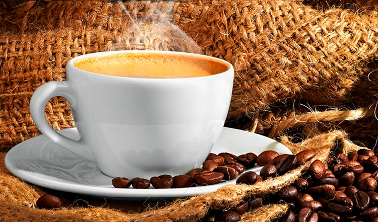 Más de la mitad de las especies silvestres de café se encuentran en peligro de extinción
