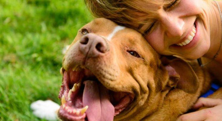 Cómo tu personalidad afecta a la de tu perro