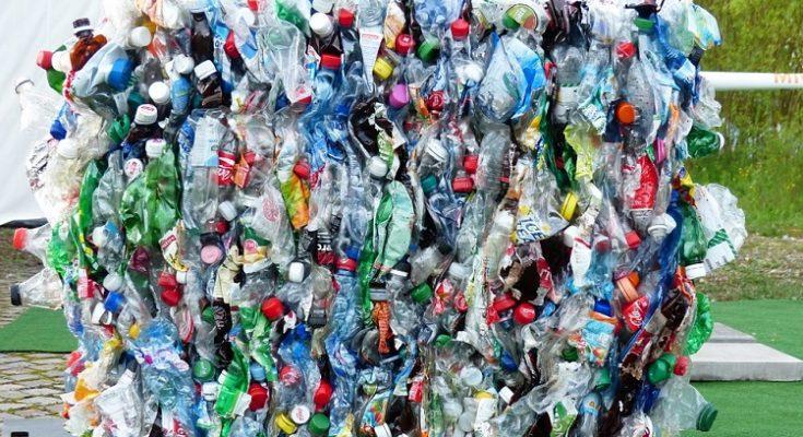 Colabora con Libera y recoge plásticos este verano